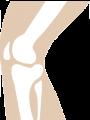 Les Bisphosphonates en rhumatologie